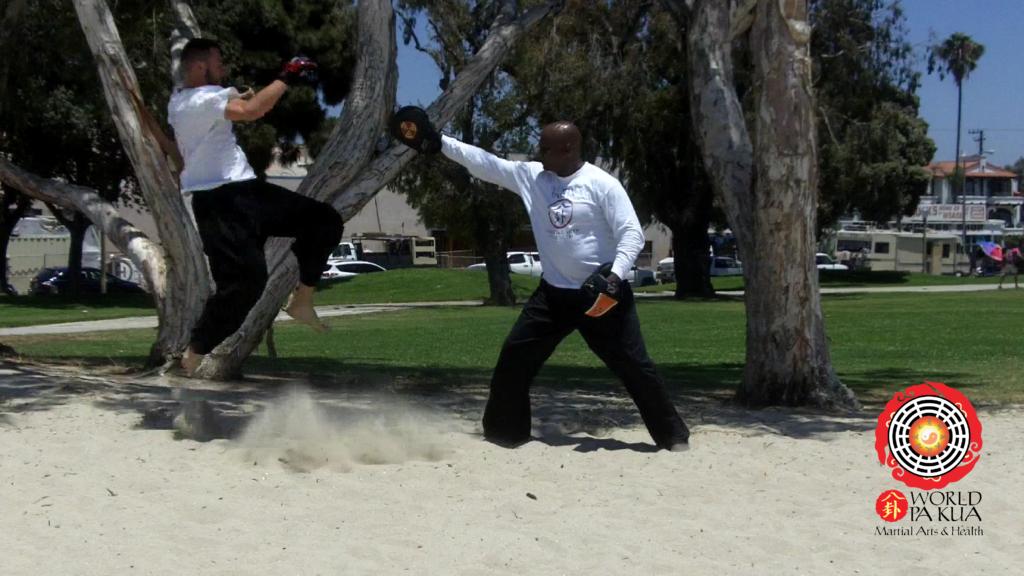 Pa Kua Kickboxing